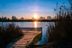 Sonnenaufgang am Steg an den Geisenfelder Weiher in der Hallerta
